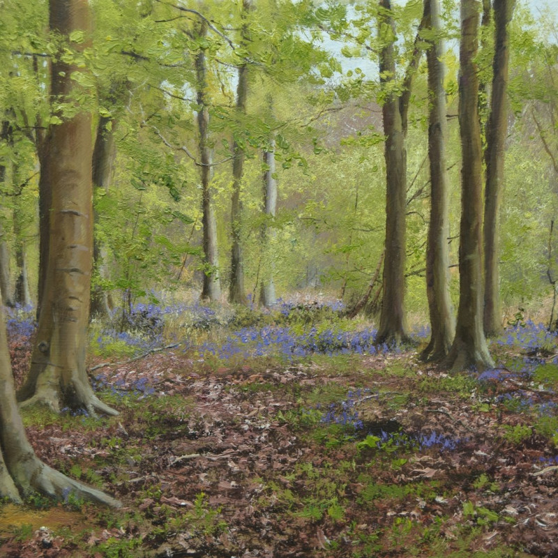 Peter Barker RSMA - Beech Trees in Spring
