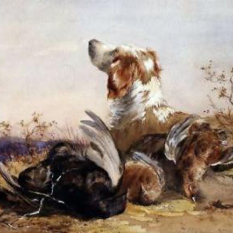 James Hardy Jnr - A spaniel with three grouse