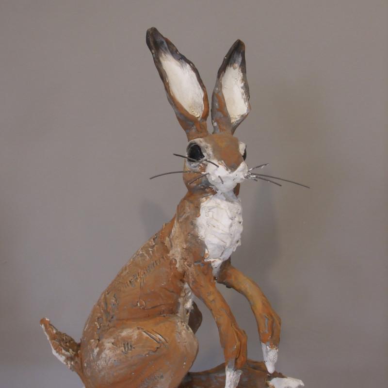 Chris Cummings - Sitting hare medium