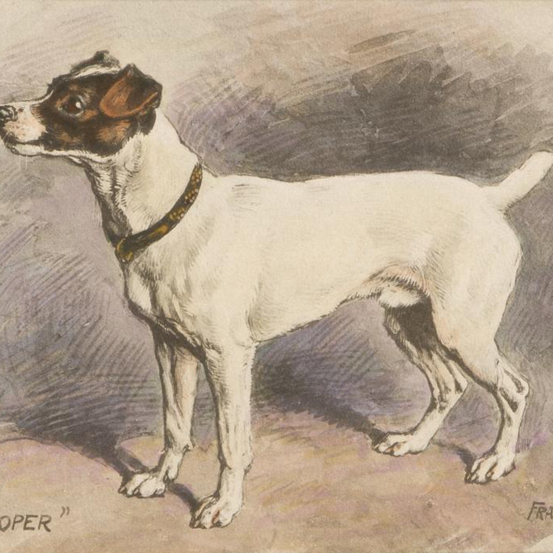 Frank Paton - Ally Sloper - a Jack Russell Terrier