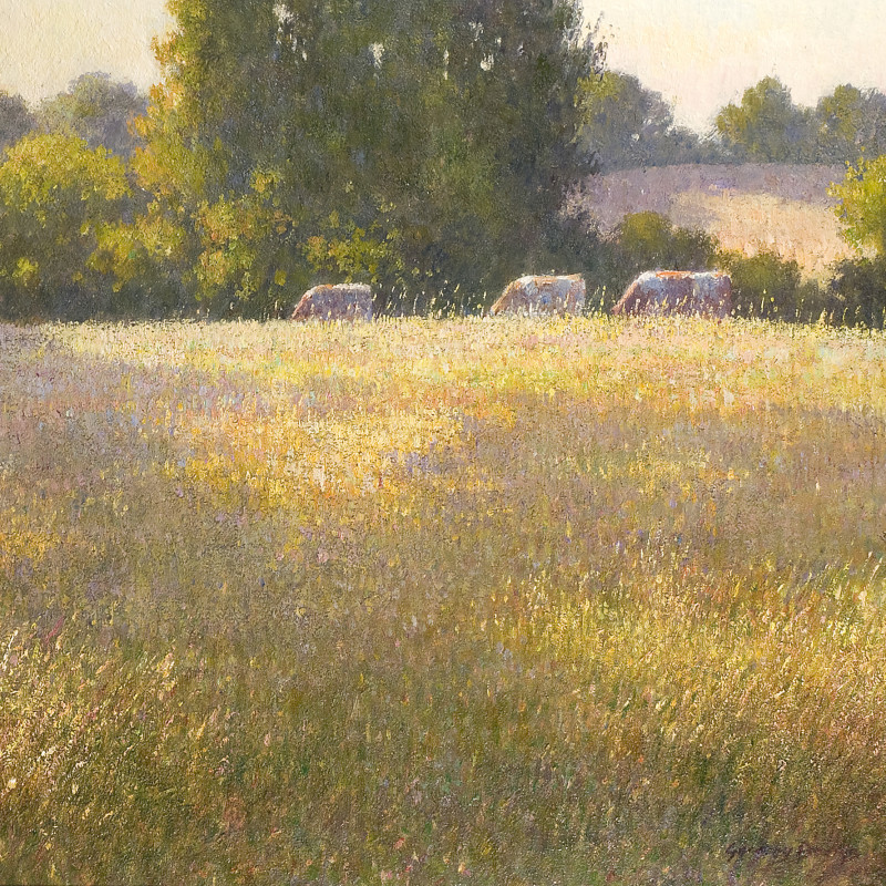 Greg Davies - Late afternoon in south west France
