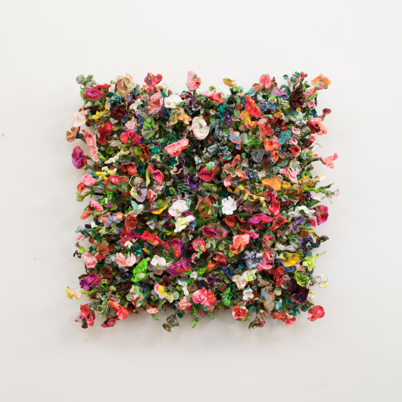 Flower Bonanza - IV, 2018