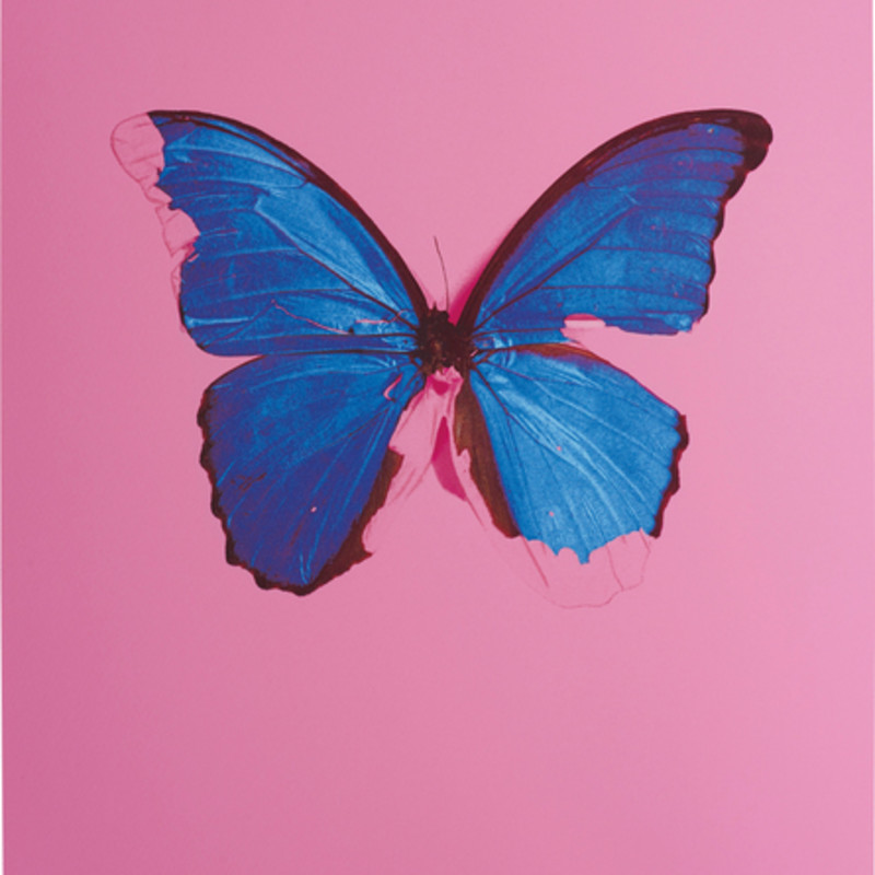 Damien Hirst, Blue Butterfly, 2006