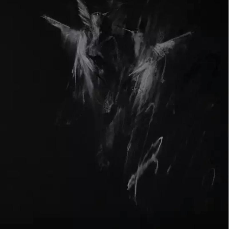 Jake Wood-Evans, Hummingbirds on Black 1