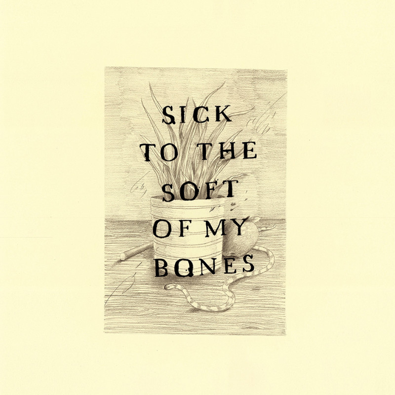Keaton Henson, The Soft of My Bones