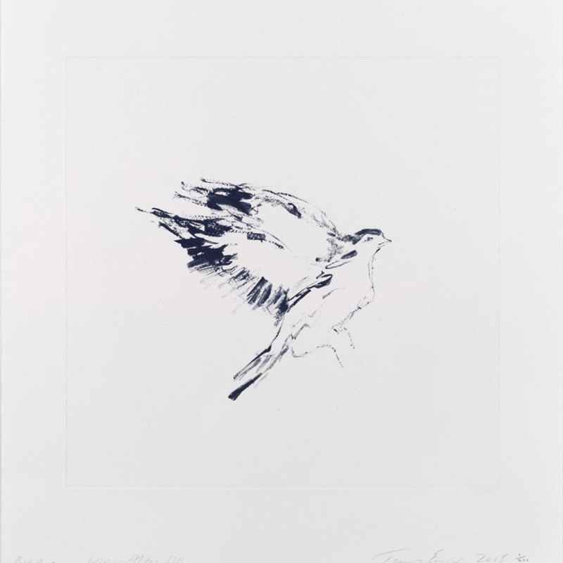 Tracey Emin, Bird On A Wing After DB