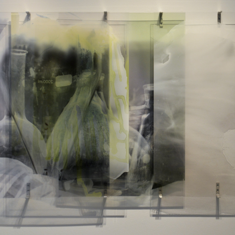 Janet Laurence, Measuring Loss (from the Crimes against the landscape series), 2010. Duraclear photograph, acrylic & mirror, 1000 x 1400 mm