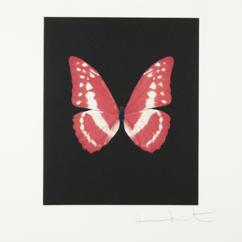 Damien Hirst, Eternal Rest, Butterfly Portrait