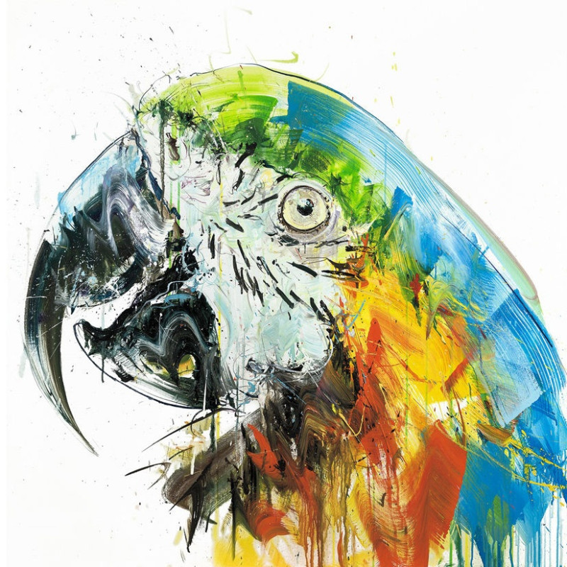 Dave White, Parrot II