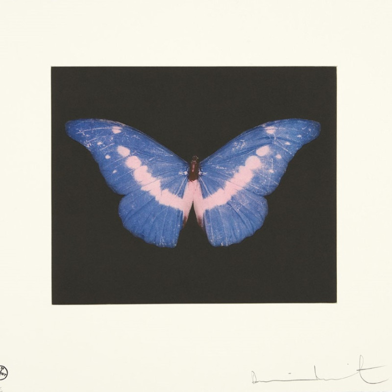 Damien Hirst, To Belong, Butterfly Landscape