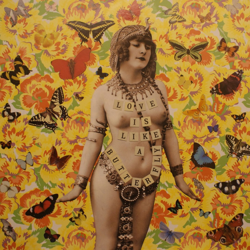 William Blanchard, Love is like a Butterfly (Yellow) 2015