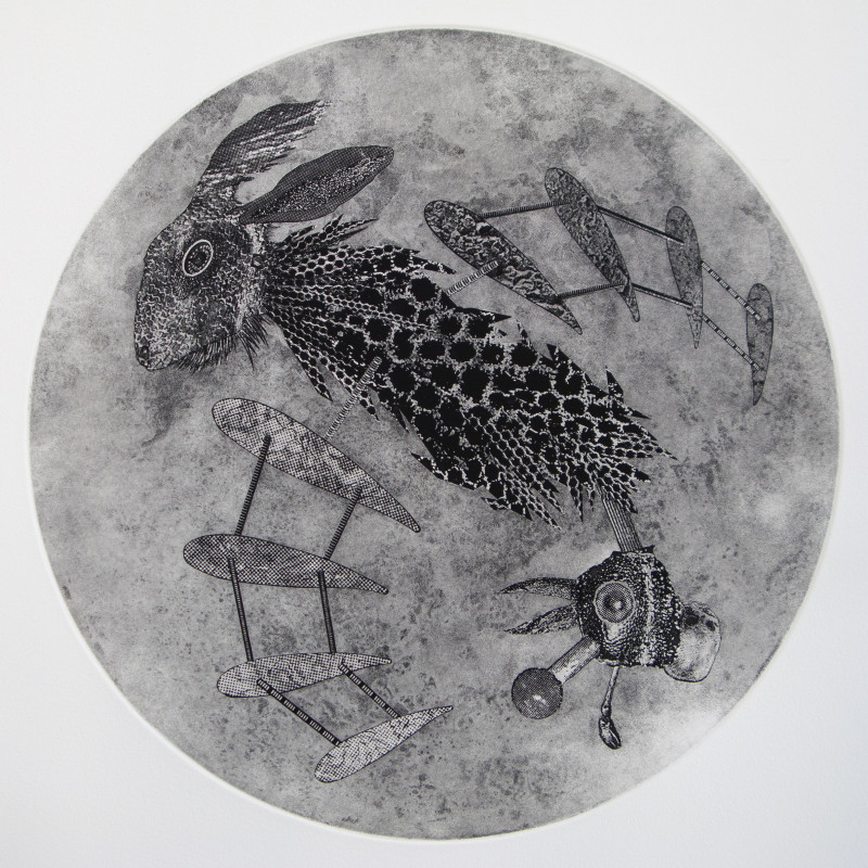 Justin Diggle ARE, Rabbit Kite Drone (After Feldman and Hoskins), etching & photo etching