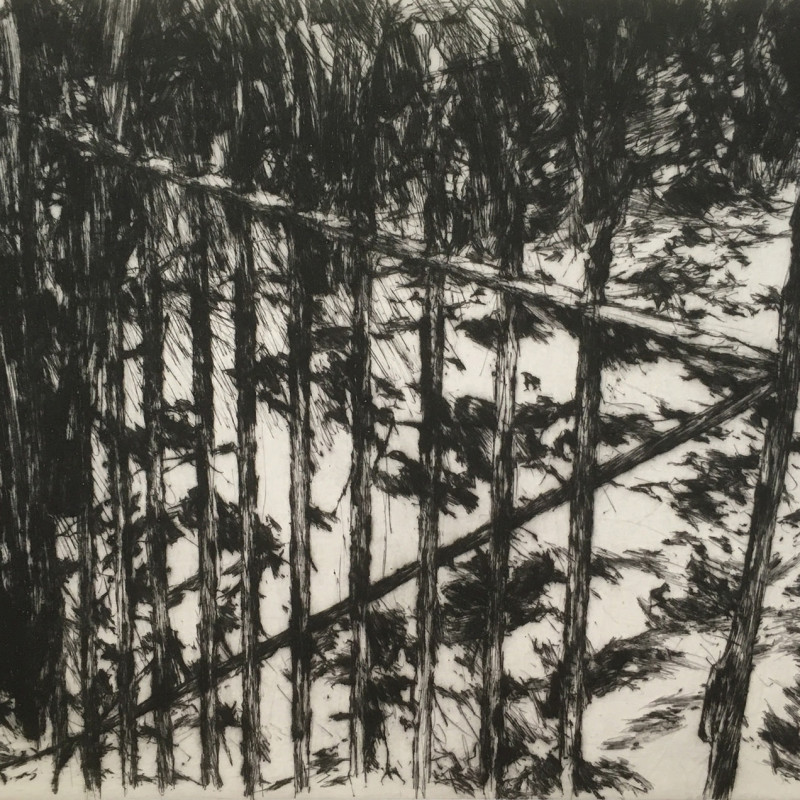 Open Gate, drypoint with chine colle