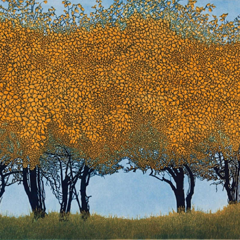 Phil Greenwood RE - Dancing Trees