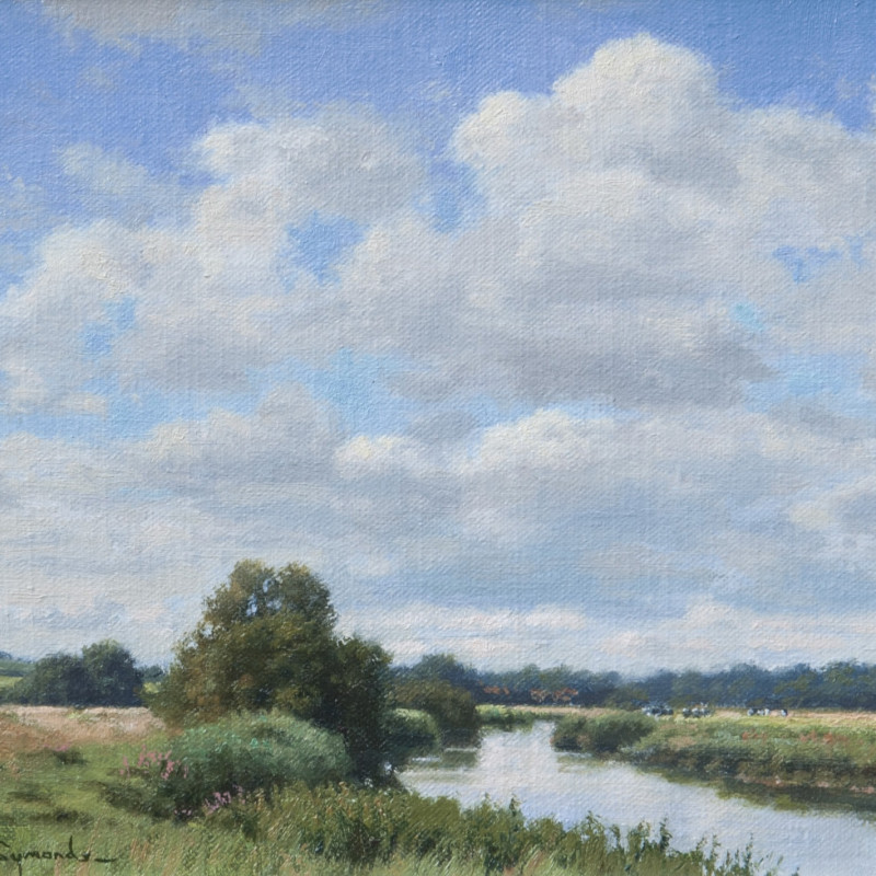 High summer, River Arun near Bury, West Sussex
