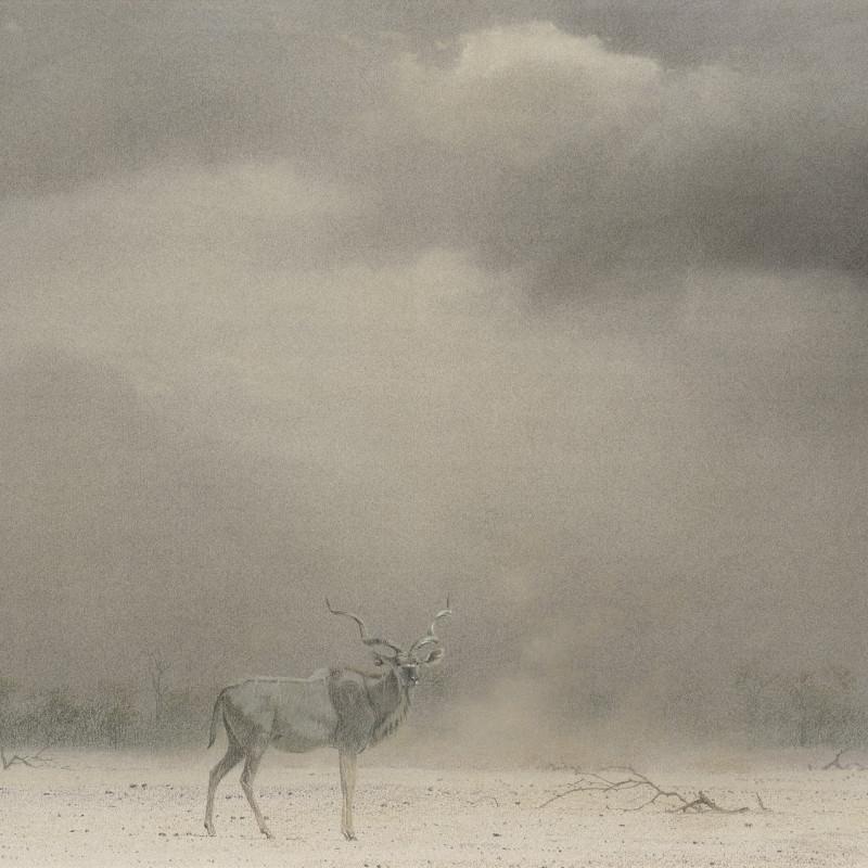 Kudu Bull, Etosha, Namibia