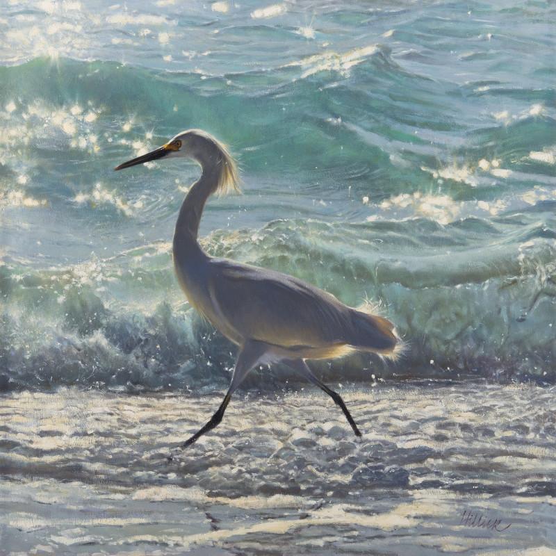 Egret along the shoreline