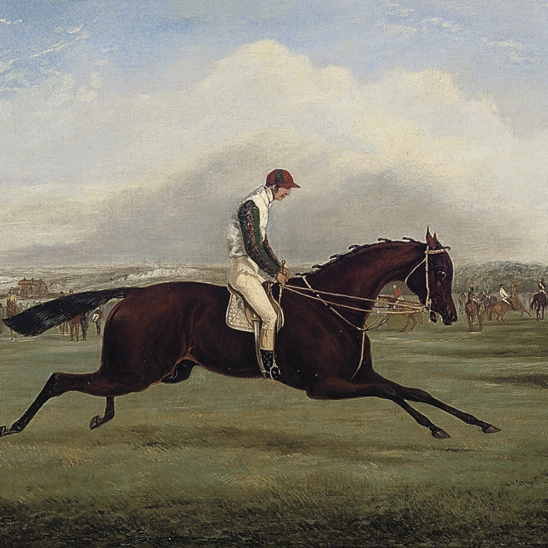 Wild Dayrell, Winner of the Derby, 1855