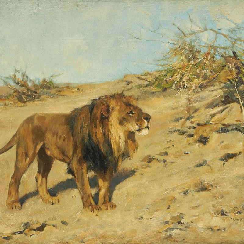 ARTHUR WARDLE, R.I., R.B.C. - Lion