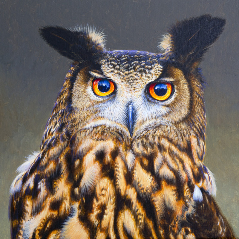 DAVID ORD KERR: AVES EXOTICAE LONDON 27 - 29 NOVEMBER, PETWORTH 1 - 6 DECEMBER