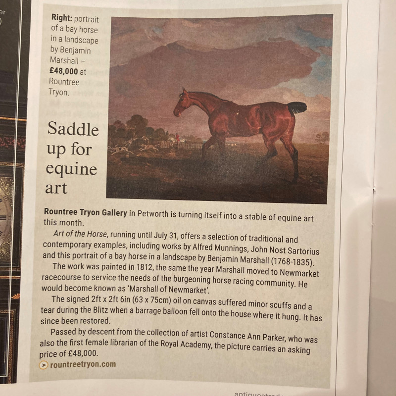 Saddle up for equine art