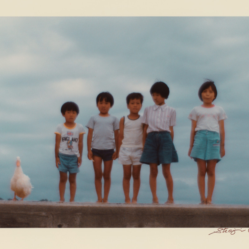 选自《白风》系列,1981 From the series White Wind