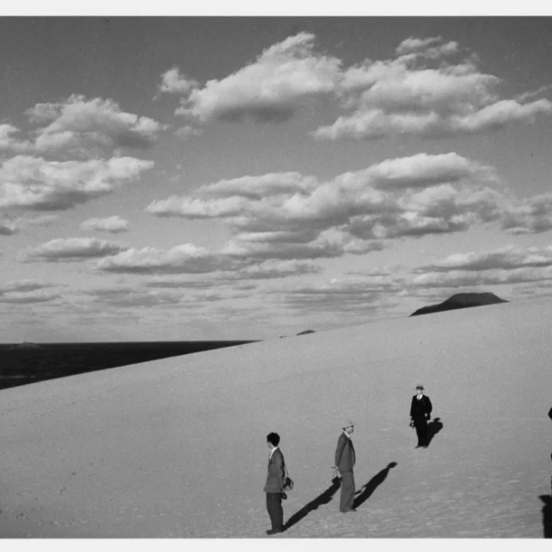 妻子在的沙丘风景,1950 Scenery of the dune with my wife (1950)