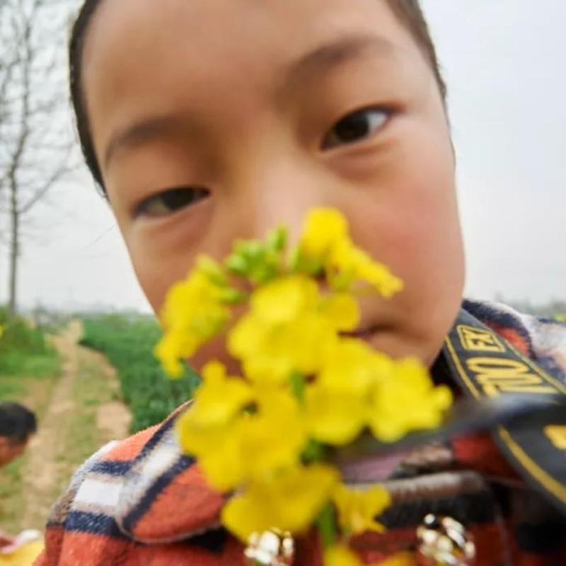 去上坟,2017年4月 尺寸可变 © 杨中天