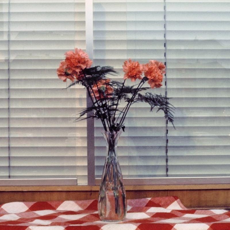窗 杜塞尔多夫 1974 Fenster Düsselforf