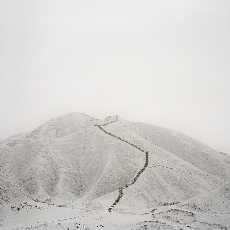 王远凌 《栖息地》 Wang Yuanling Habitat 2011 - 2013