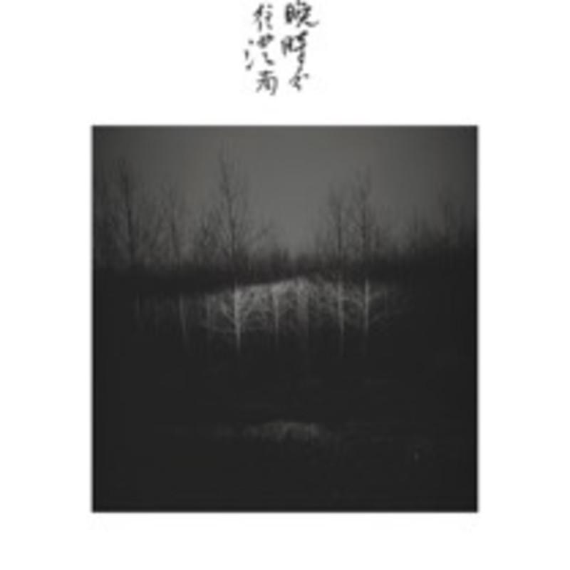 魏壁《梦溪》 Wei Bi Meng Xi 2008
