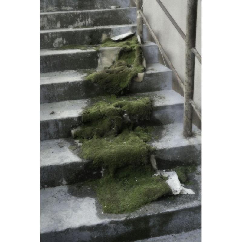 周怡君,选自《泡沫》系列
