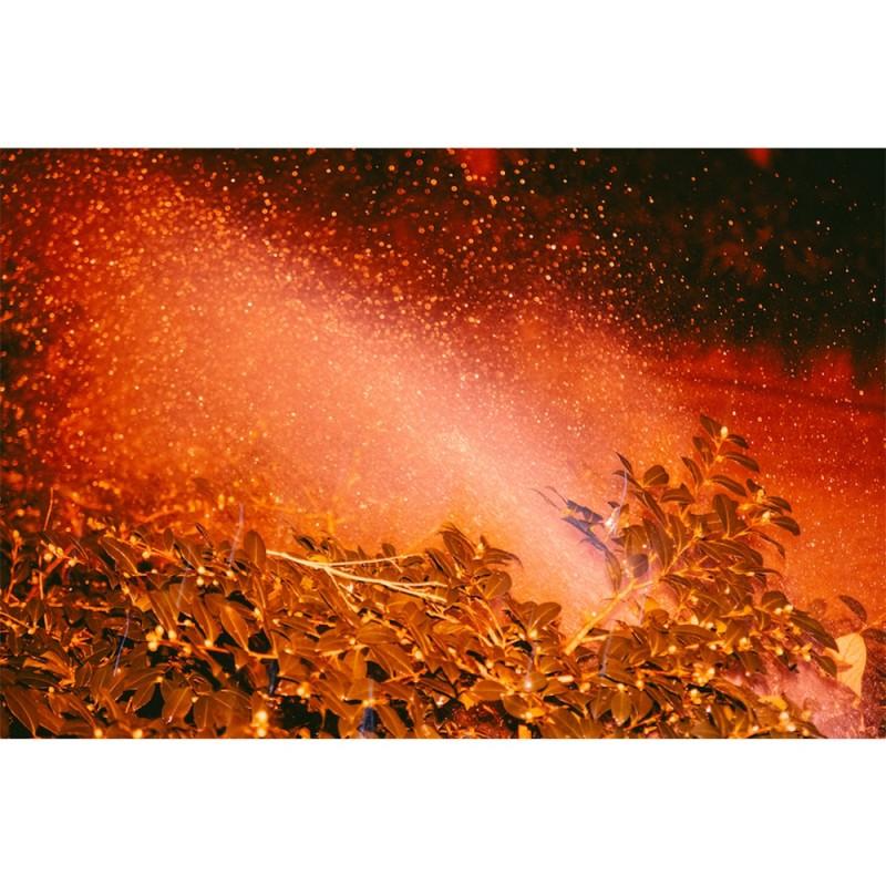 """施亦琳《Red》 选自《Romantic Chaos》系列 Shi Yilin, """"Red"""", of """"Romantic Chaos"""" series"""