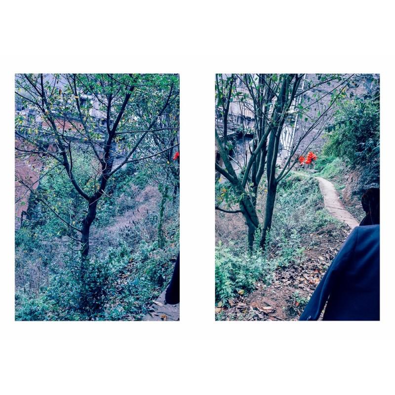 """解舒畅《云阳老县城后坡2019》 选自《朝花夕拾在云阳》系列 Xie Shuchang, """"The hillside of Yunyang old town 2019"""", of """"Two dreamed sequences from His Land"""" series"""