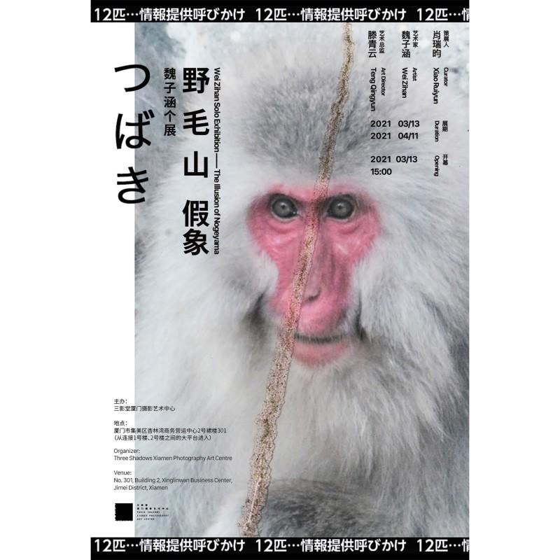 The Illusion of Nogeyama, WEI ZIHAN SOLO EXHIBITION