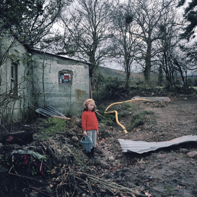 The New Irish Landscape