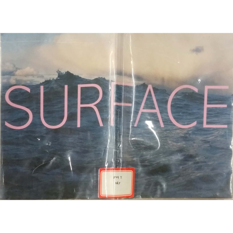 Surface : contemporary photography, video, and painting from Japan