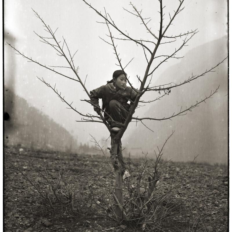 2008-2009三影堂摄影奖大奖得主 The Winner of TSPA 2008-2009 阿斗 A Dou 树与女孩 Girl and Tree, 2006 明胶卤化银照片 Gelatin Silver Print