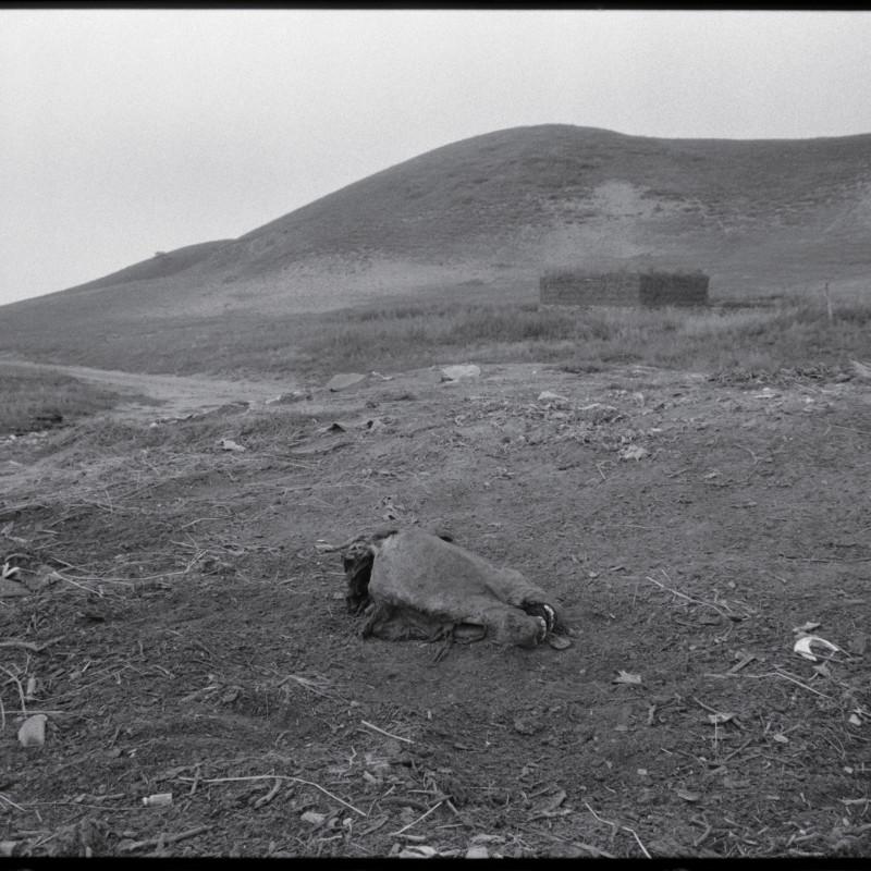 《马头,河北》 Horse Head, Hebei 1997