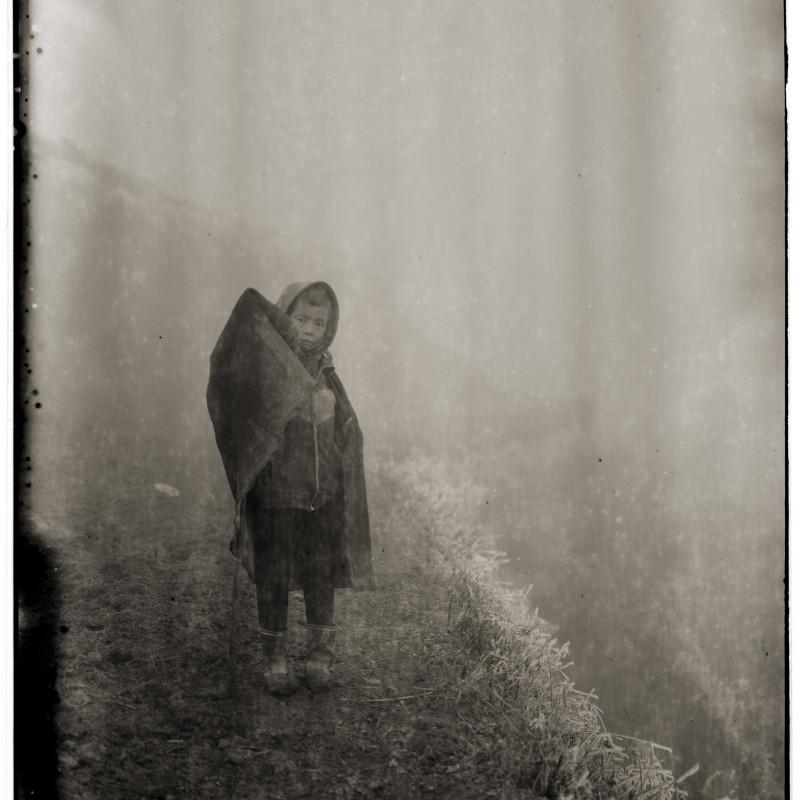 《雾、孩子、霜》 Fog, Child, Frost 2006