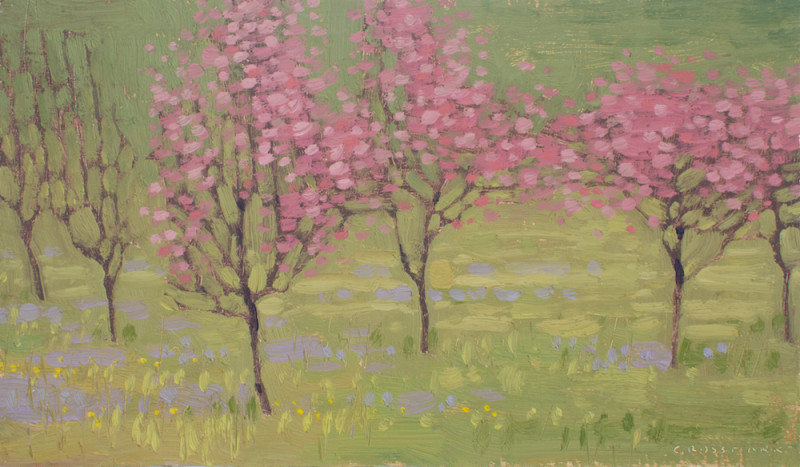 David Grossmann, Pink Spring Flowers