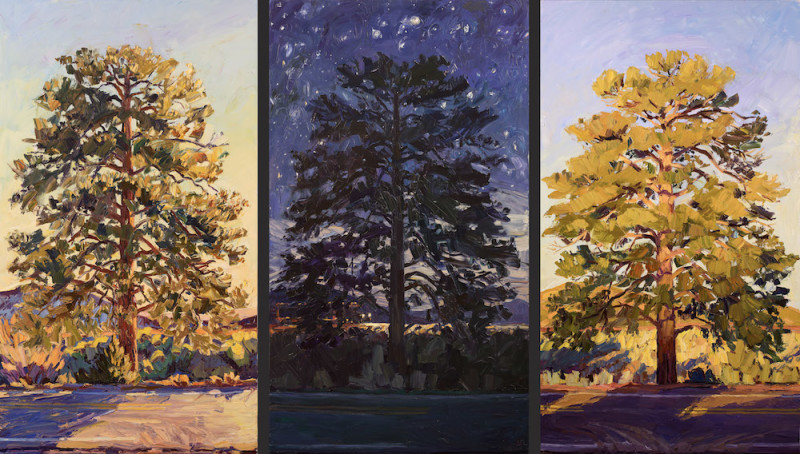 Jivan Lee, Lone Tree Series - By the Sun, Miles to go/the Universe Before Us, Lightening Day