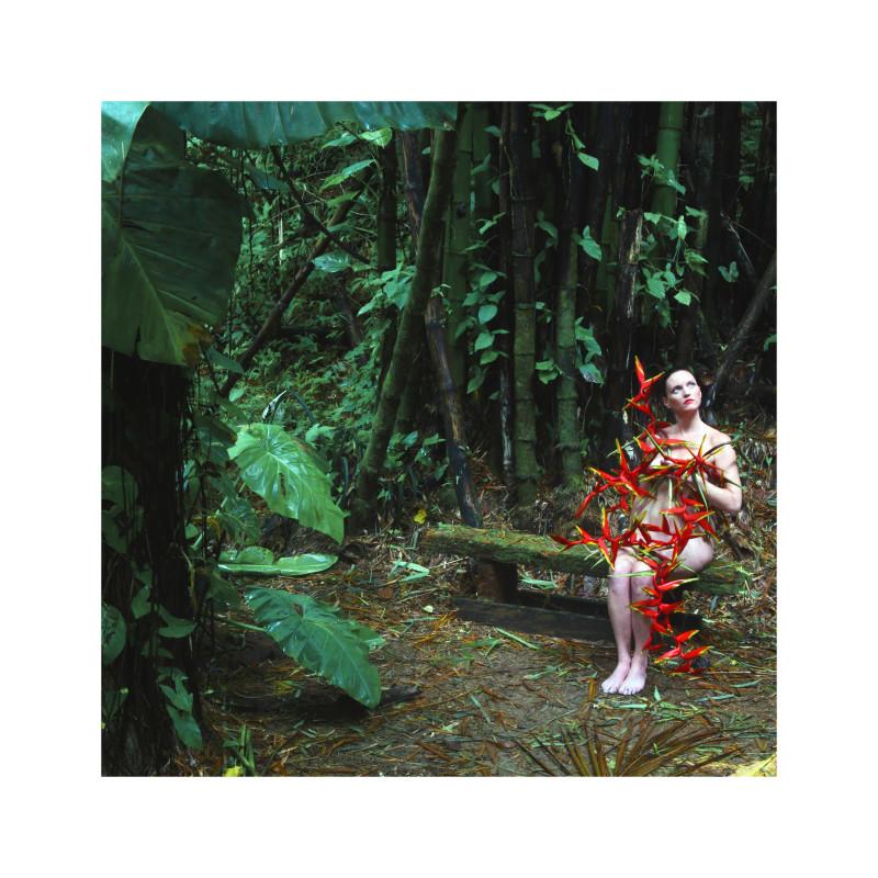 Carlos Betancourt, The Enchanted Garden, Casa Flamboyant I, 2010