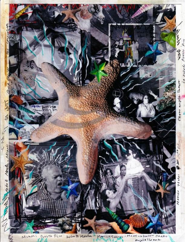 Carlos Betancourt, Starfish and photos, 1980