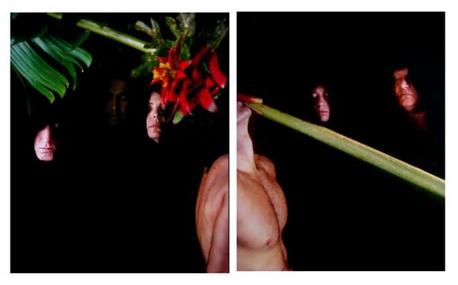 Carlos Betancourt, Back Stories at Hobe Sound Z-1 Z-2, 2004, 2004