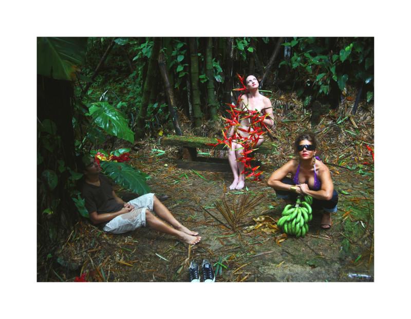 Carlos Betancourt, The Enchanted Garden, Casa Flamboyant III, 2010