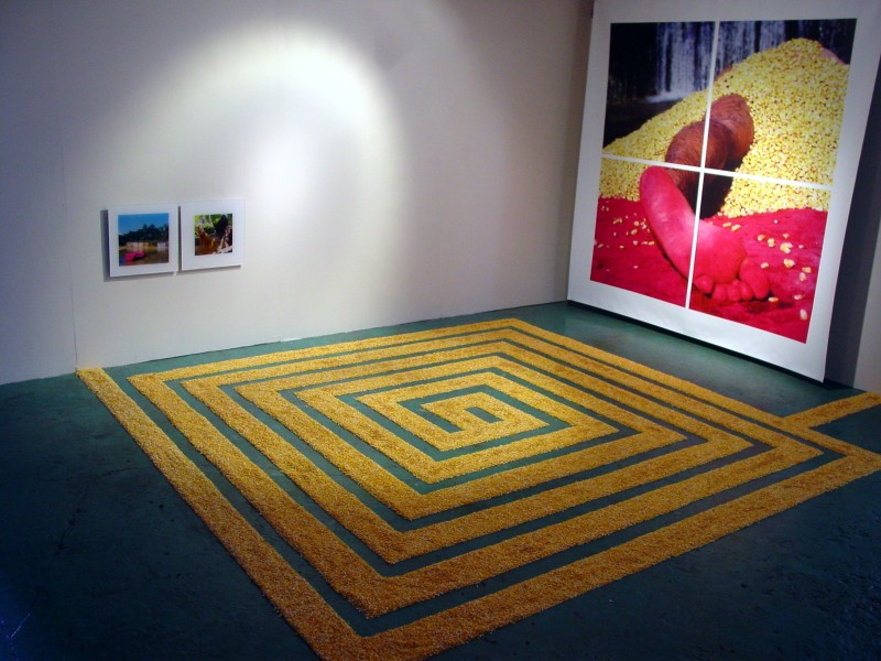 Carlos Betancourt, Overall Installation View, 2003