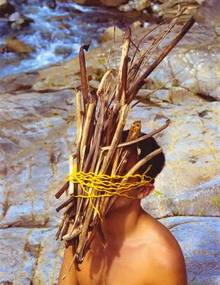 Carlos Betancourt, Vieques and Rincon Series, Bejigante en Rio Blanco, 2004