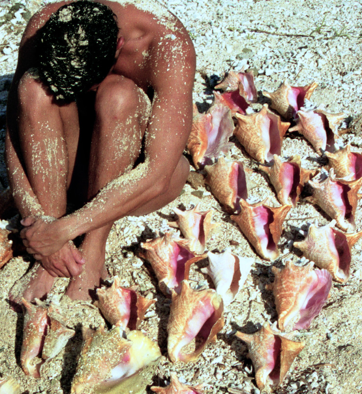 Carlos Betancourt, Untitled ( Conch, Alberto and Vieques), 2004