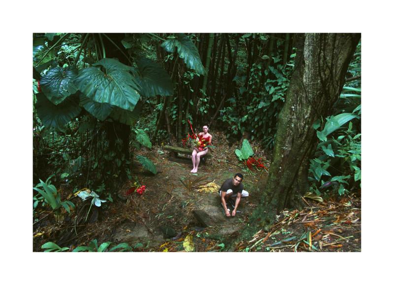 Carlos Betancourt, The Enchanted Garden, Casa Flamboyant II, 2010